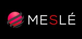 MESLE logo